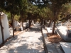 Friedhof in Lefkes