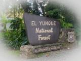 El-Yunque-58.jpg
