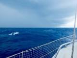 Squalls-Regen-kaum-Wind-1